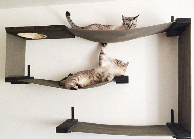 Полка настенная для кошек своими руками