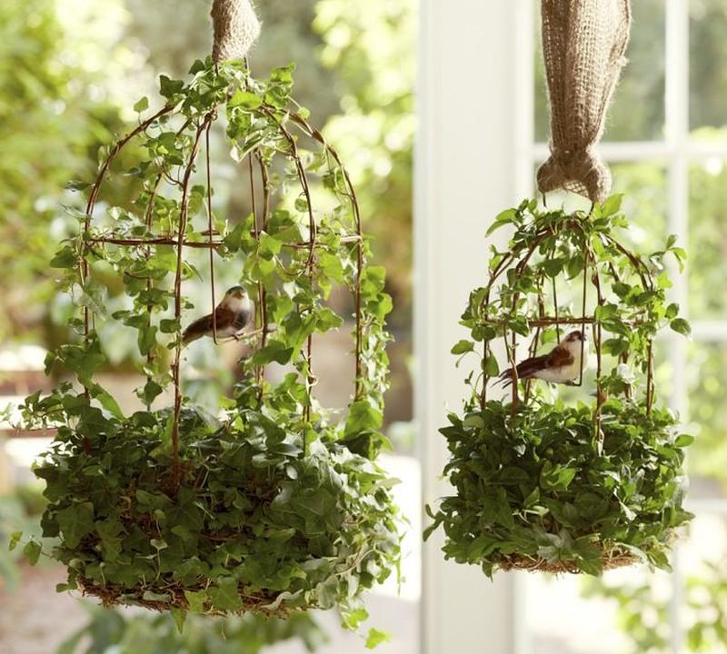 Декор из комнатных растений своими руками